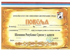 CH BiH Bibi (2)