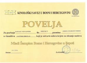 CH Srbsko Fany (2)